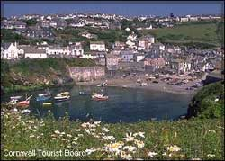 Fantastic Self Catering Cottages In Port Isaac Home Interior And Landscaping Oversignezvosmurscom